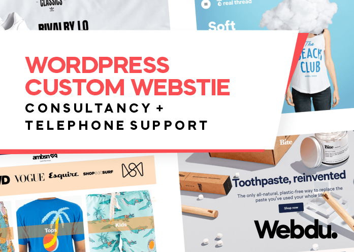 WordPress Custom Website