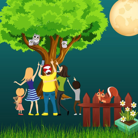 Educational family fun watching and learning owl habits with your new KingWood Owl House box.
