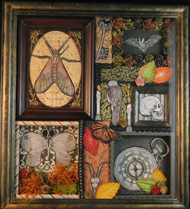 shadowbox art with insect key bat human and goat skull pocket watch moss