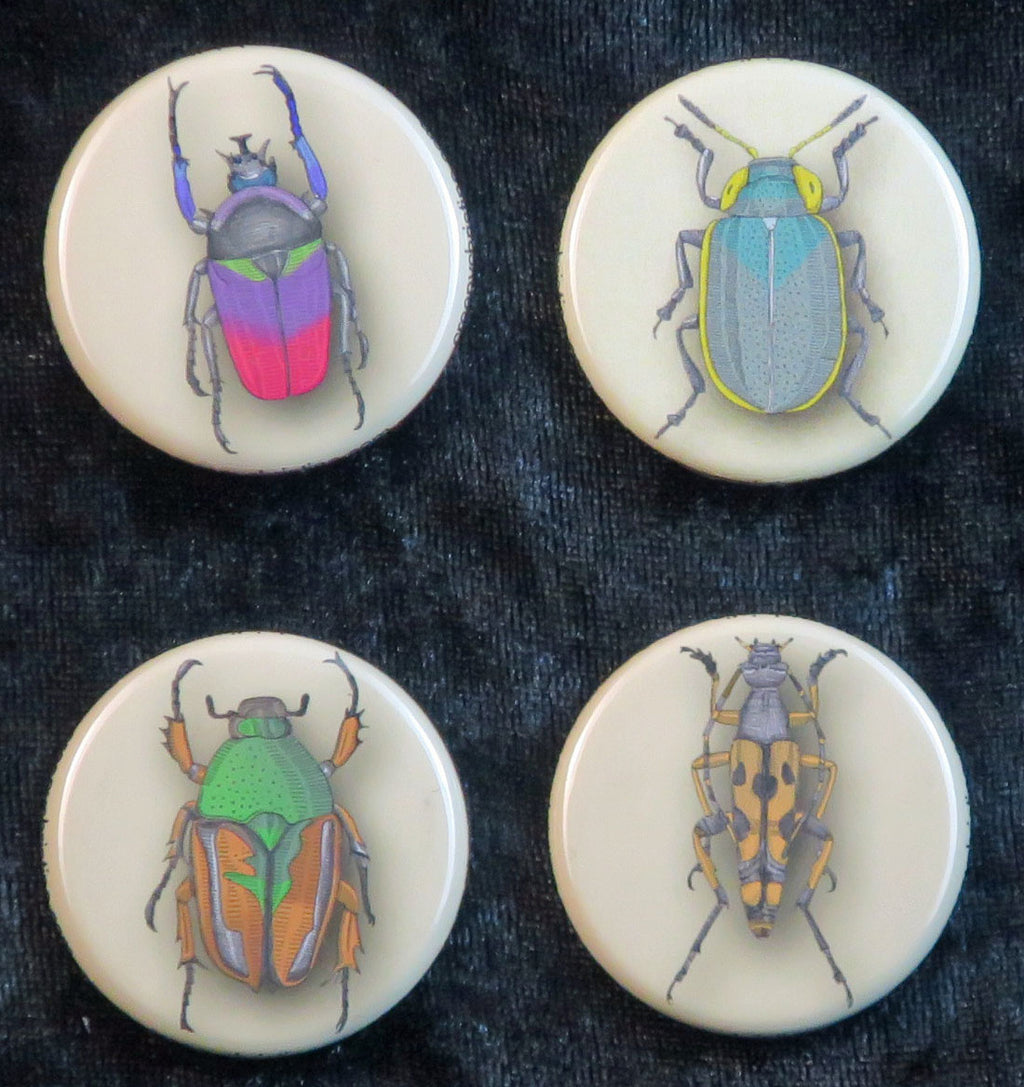 beetle buttons and magnets