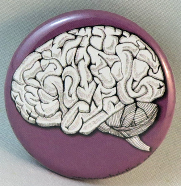 human brain anatomical button magnet