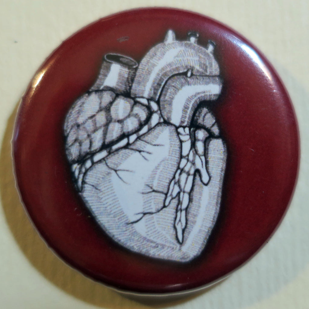 human heart anatomical button magnet