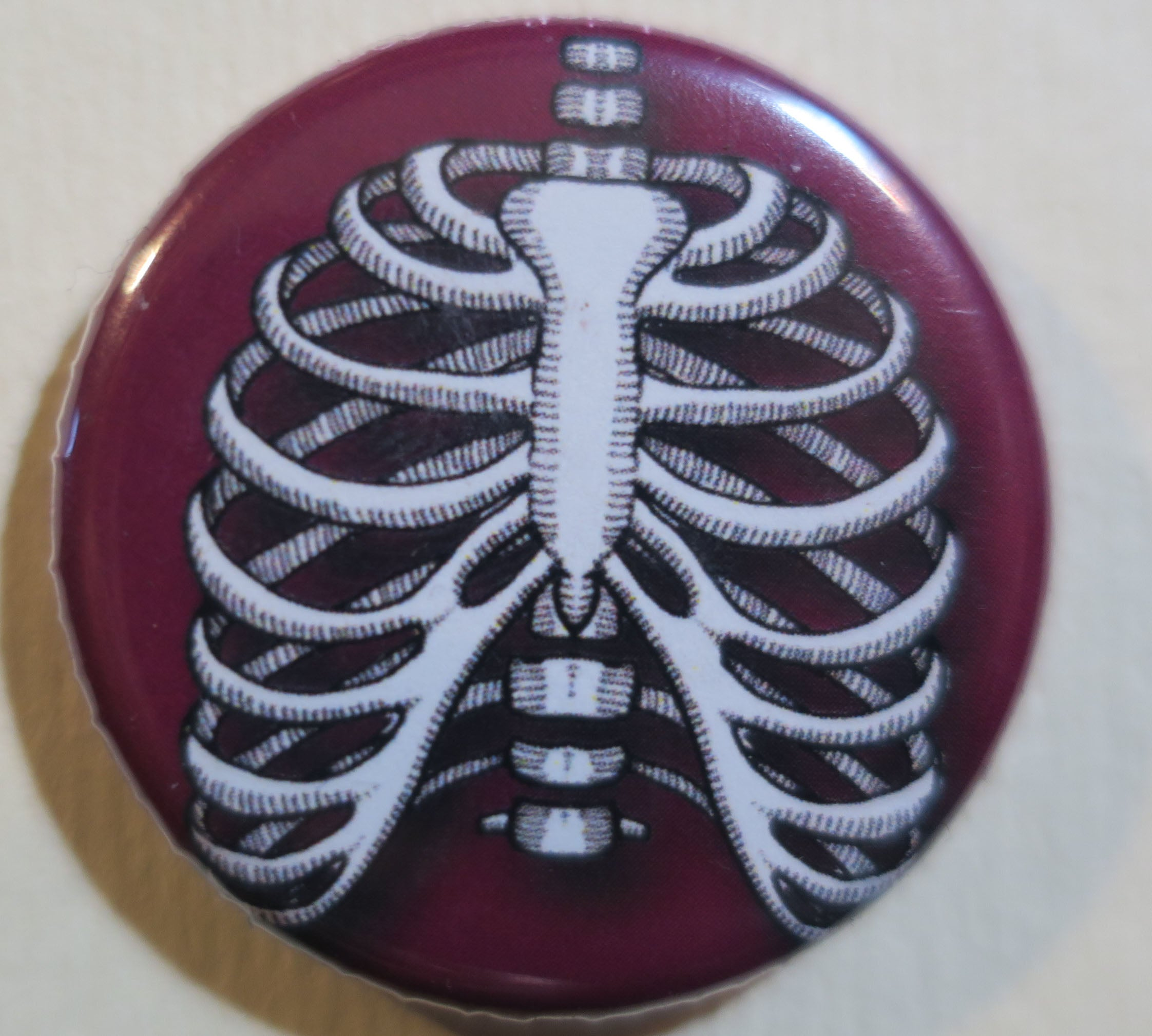 human ribs button magnet