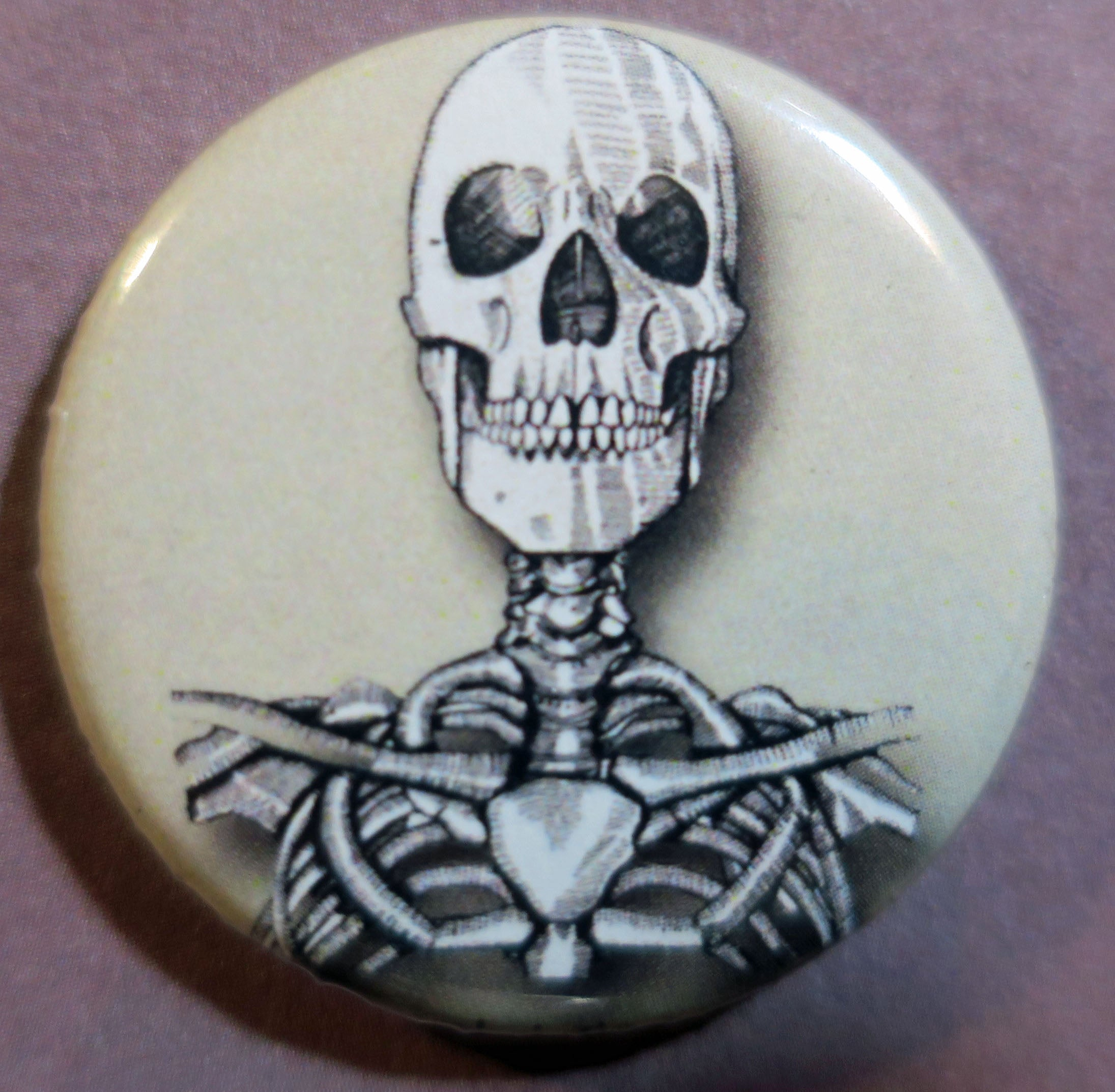 skull and ribs button magnet