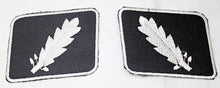 Load image into Gallery viewer, WWII WW2 PATCHES SS Standartenfuhrer Colonel collar tabs COLLAR PATCH SET-STURGIS MIDWEST INC.