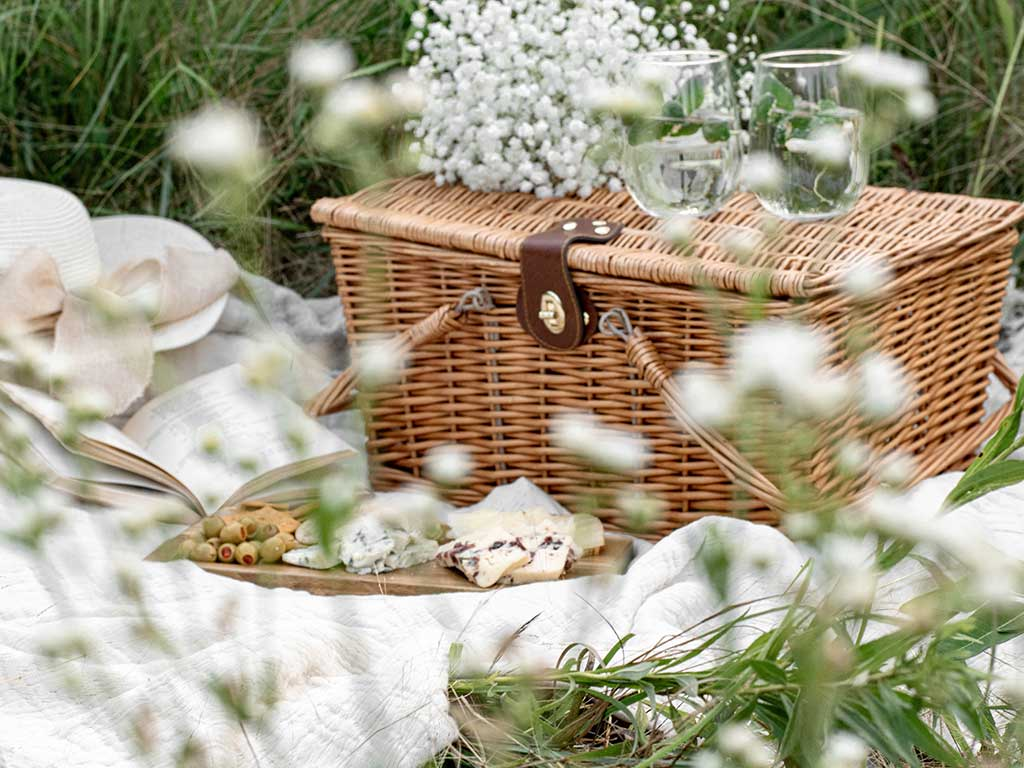 Picnic Ideas and tips for your next picnic