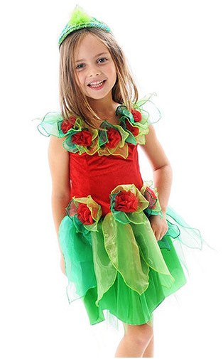 DRESS SMALL CHRISTMAS FAIRY