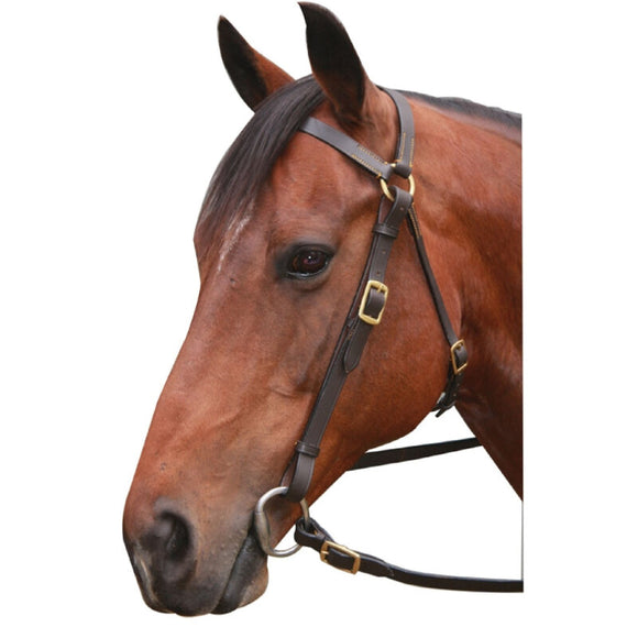 Eureka Brass Barcoo Bridle - Brown