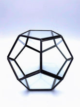 Load image into Gallery viewer, Black Polygon Terrarium | 14cm