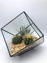 Load image into Gallery viewer, Black Square Terrarium | 15x15x15cm