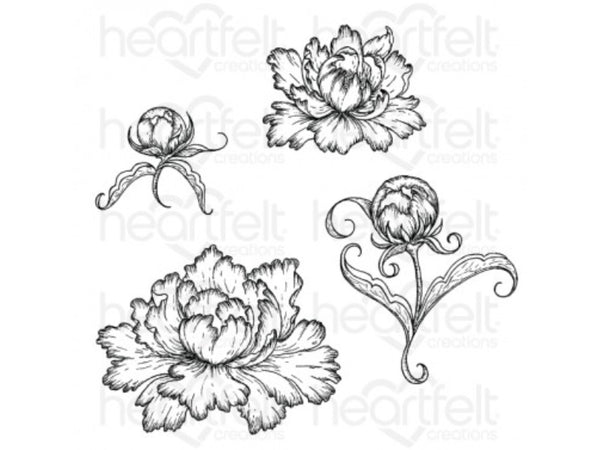 Heartfelt Creations Sweet Peony Bud and Blossom Cling Stamp and Die