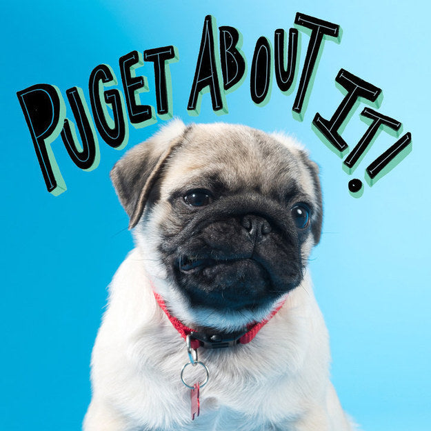 Puget About It