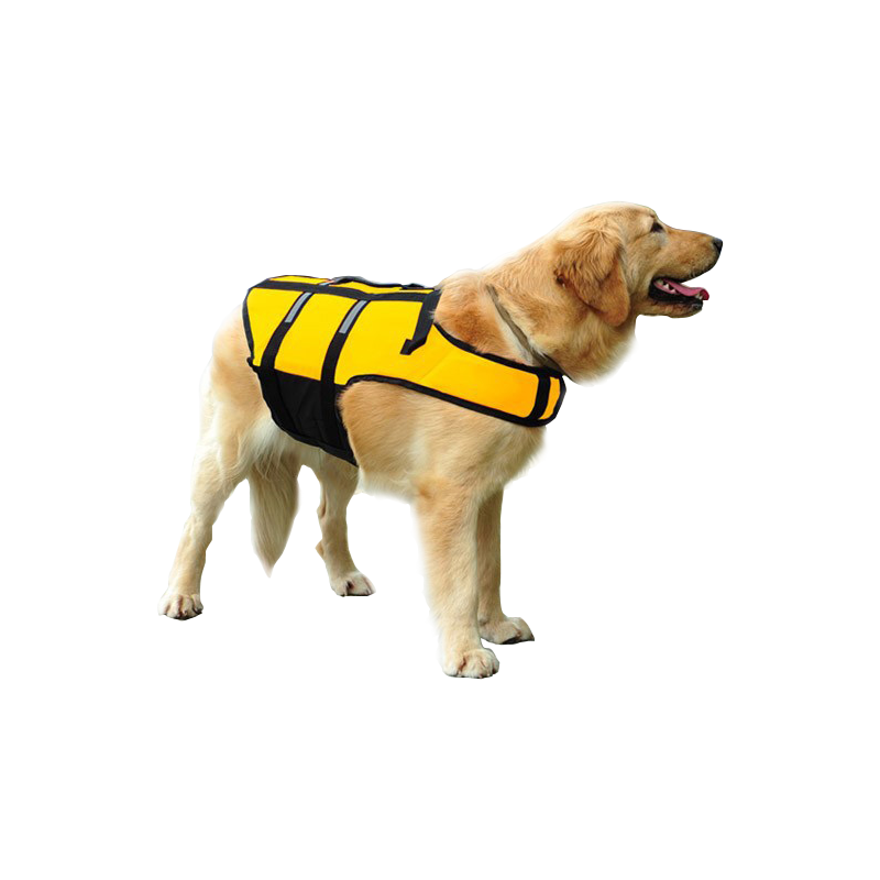 yellow-dog-life-vest2.png