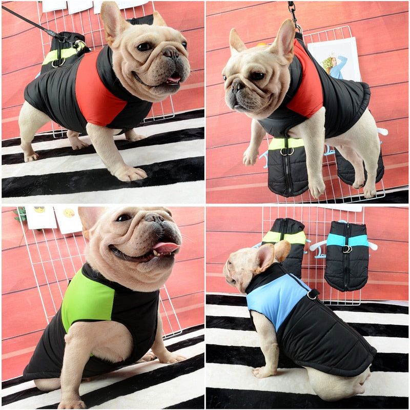 Waterproof French Bulldog Vest Jacket