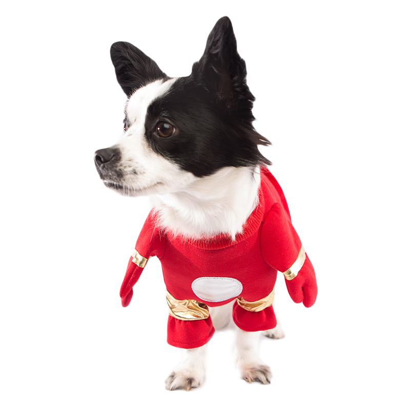 Iron Man Dog Costume