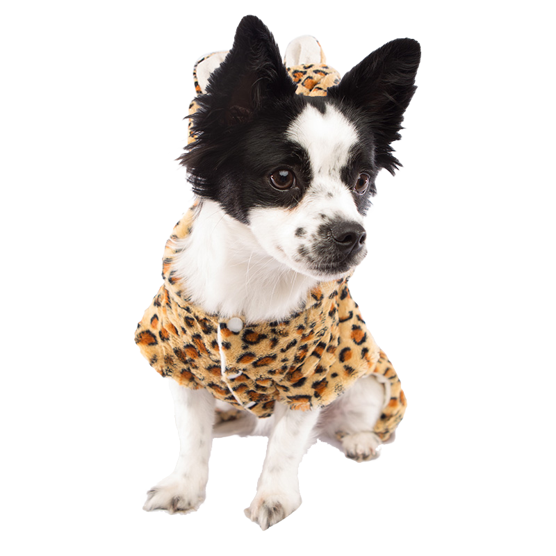 Leopard Dog Costume