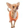 Load image into Gallery viewer, Orange Dog Sweater