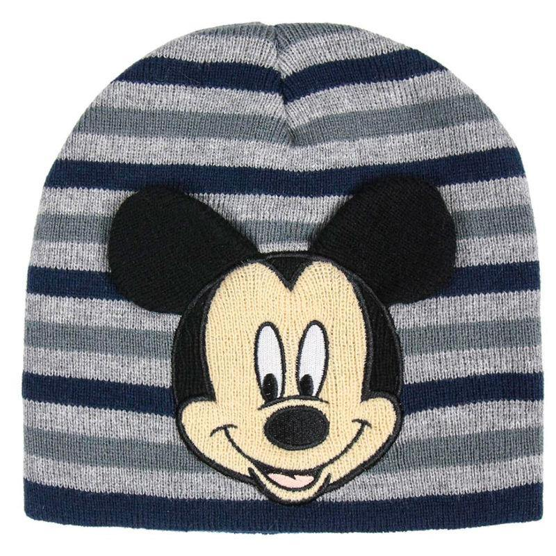 Disney Mickey premium hat