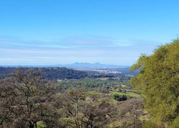 21 Acre Ranch in Smartsville California - Land For Sale