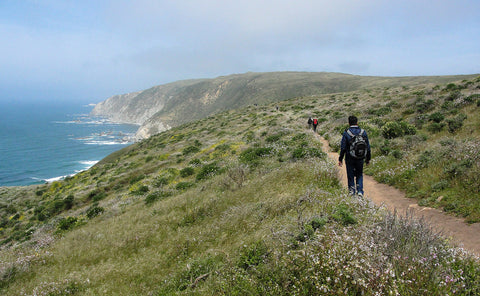 Hiking the majestic Tomales Point Trail on Point Reyes
