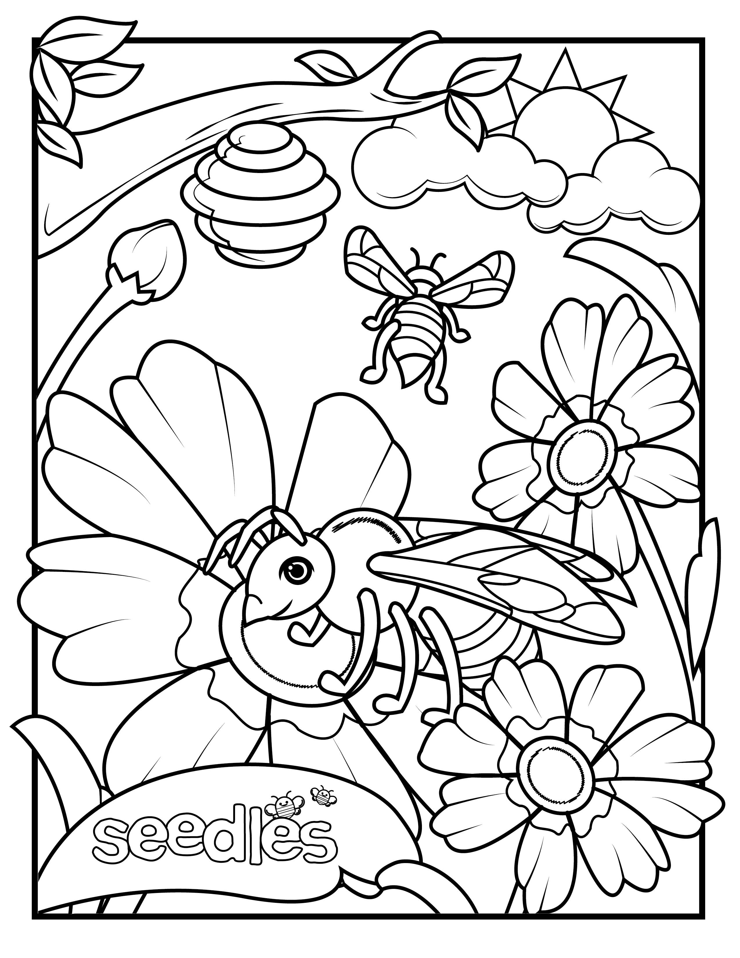 wildflower coloring pages best coloring page with flowers and
