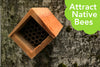 Native Bee Den - Attract Native Bees Easily!