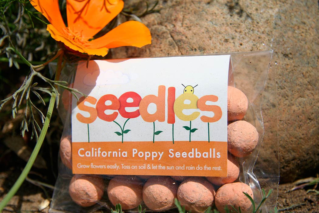 W - California Poppy Seedles