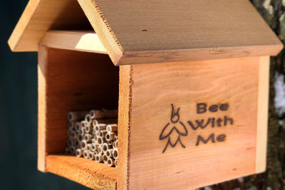 Native Bee Cabin - Easily Attract Native Bees!