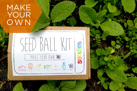 W - Wildflower Seed Balls DIY Kit