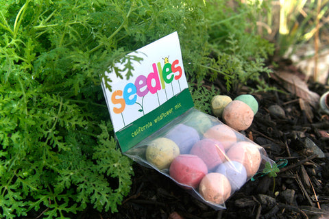 W - Wildflower Seedles Gift Pack