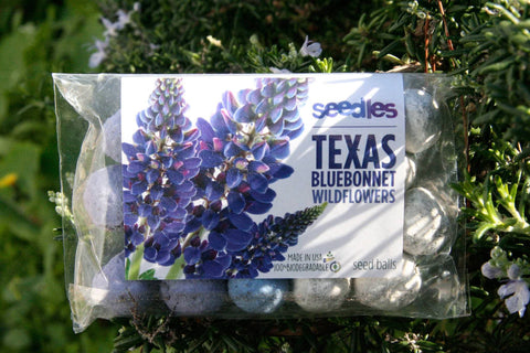 W - Texas Bluebonnet Seedles