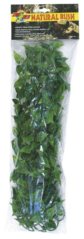 Zoo Med Natural Bush Plants Mexican Phyllo Large - BeeGreen
