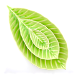 Leaf Plate Mini - Green