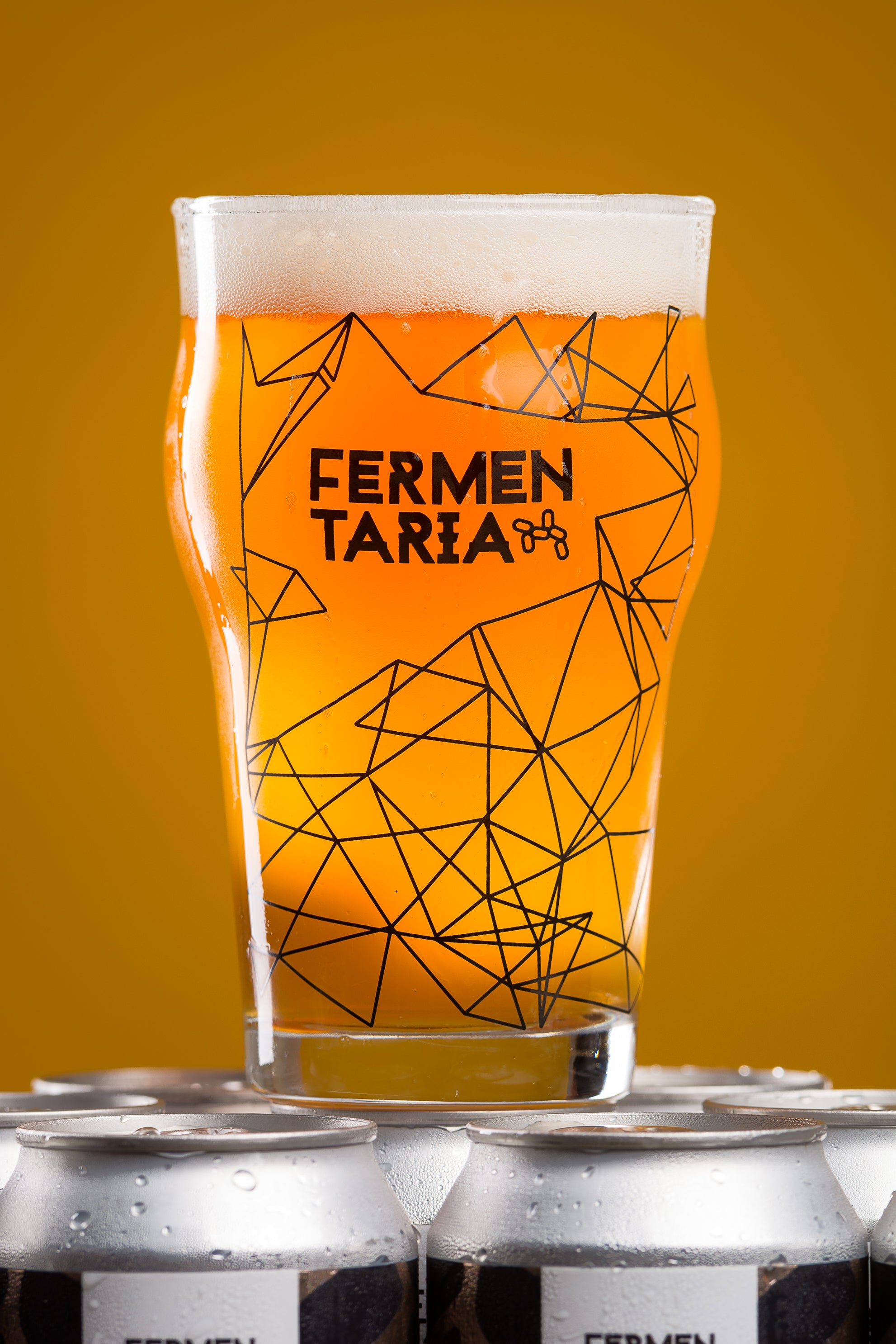 Copo Pint Fermentaria - 473 ml