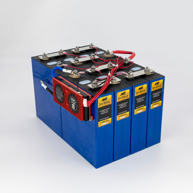 Lynx Battery 24V 200Ah Lithium Iron Phosphate LiFePO4 Rechargeable Prismatic Deep Cell Battery with BMS and Cold Temp Cutoff for RV, Solar, Marine & Off-Grid Applications