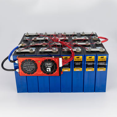 Lynx Battery 48V 200Ah Lithium Iron Phosphate LiFePO4 Rechargeable Prismatic Deep Cell Battery with BMS and Preset Cold Temp Cut Off for RV, Solar, Marine & Off-Grid Applications