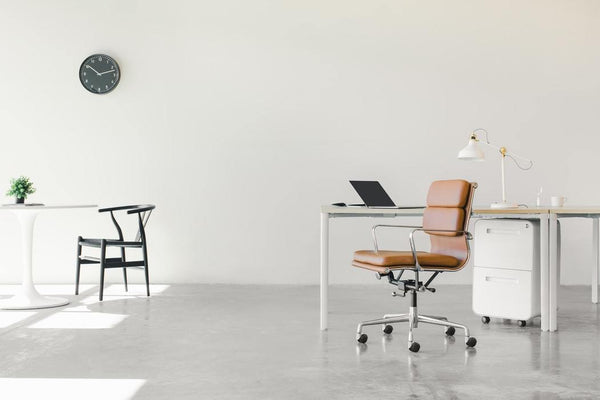 The Best Ergonomic Office Chairs for Back Pain - Elecwish