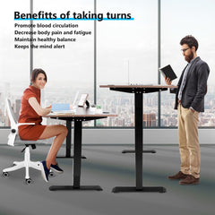 ELECWISH Electric Height Adjustable Standing Desk