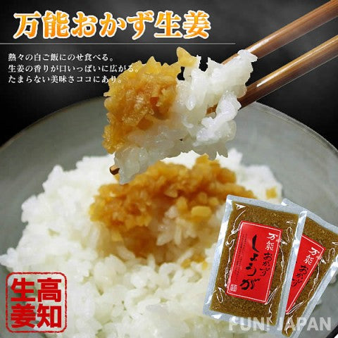 All-purpose Side Dish Ginger (Set of 5)【F_006】