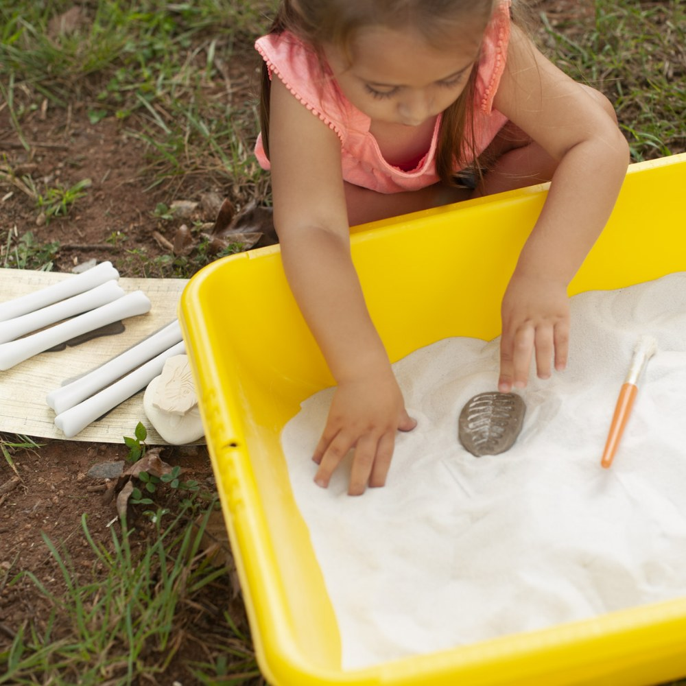 Let's Investigate Fossils, Stone Play Set