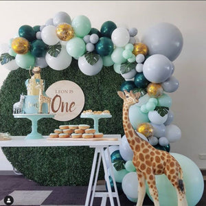 Wild One Balloon Garland Kit