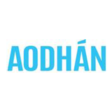 Low cost Aodhan wheels sales special