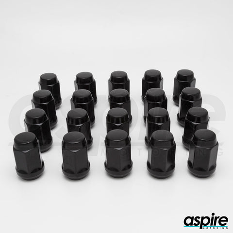 Black Hexagonal Lug Nuts