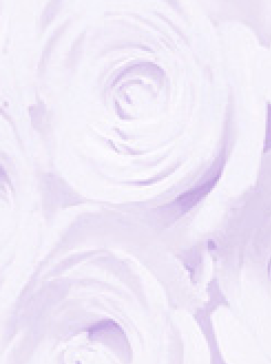 Rose Lilac A4 Translucent Paper 112gsm
