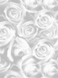 Inspired Roses Silver A4 Translucent Paper 112gsm