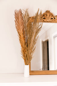 "Dried SAGO PALM Leaves 36"" decor 3pcs"