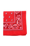 Red Rockabilly Paisley Bandana