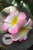 Twin Pink and yellow Frangipani hair clip
