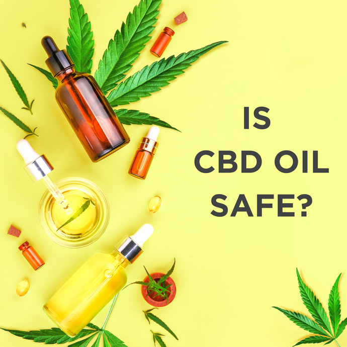 Is CBD Oil Safe? [VIDEO]