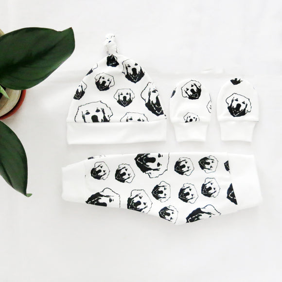 Golden Retriever Organic Cotton Newborn Hat Mittens And Leggings Set